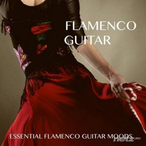 VA - Flamenco Guitar (2014)
